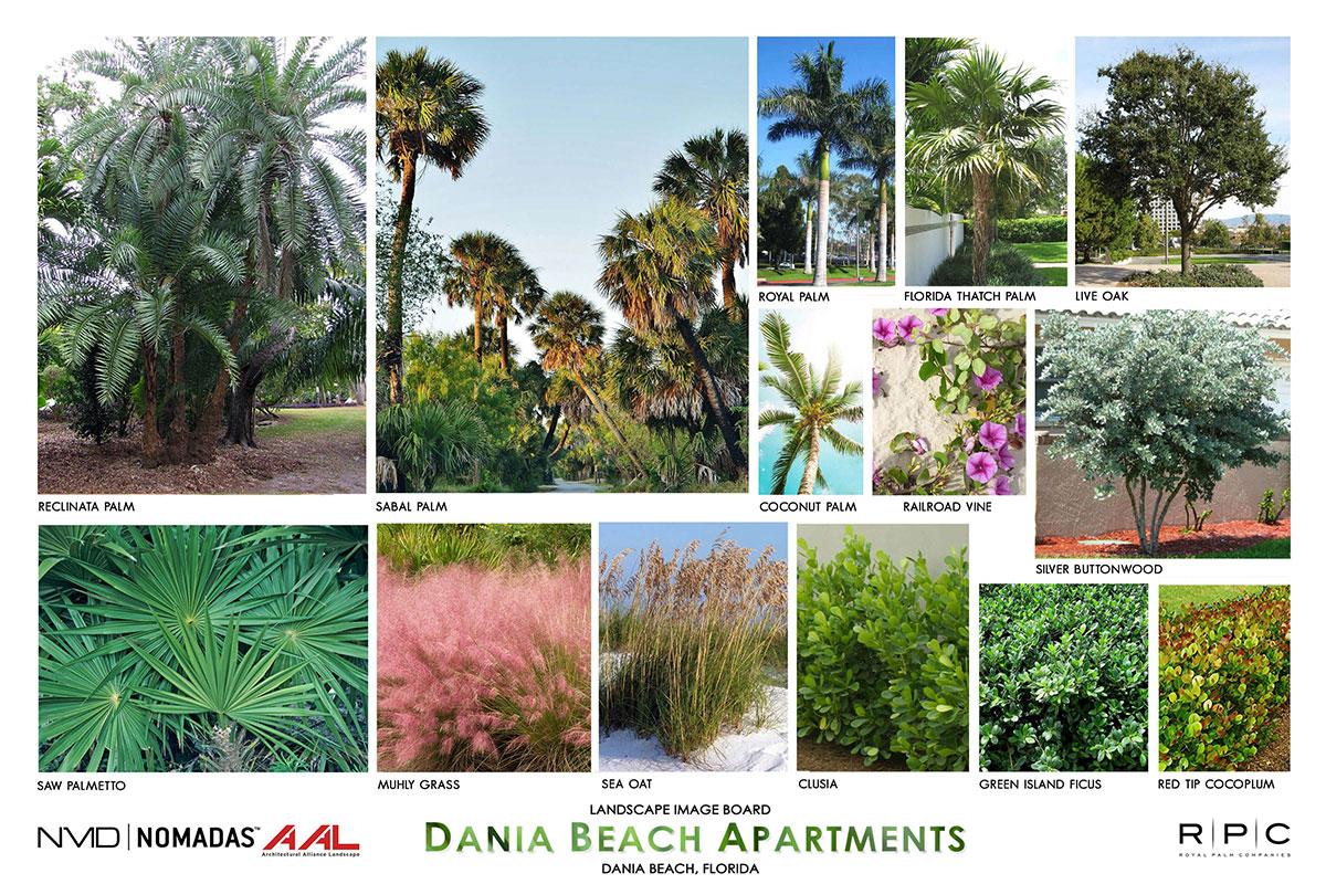 Dania Beach, FL